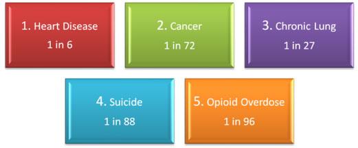 Opioid #5 on lifetime killer list